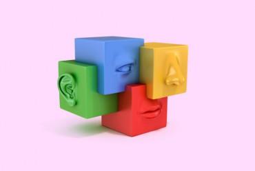 Videos im Newsletter (Teil I): Instrument multisensualer Markenführung